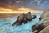California - Monterey, Point Lobos : This area has been the home of famous photographers such as Edward, Cole and Brett Weston, Ansel Adams, Morley Baer,  and  others.  Currently there are several high quality photo studios in the area.  And for good reason.  This place is extremely  photogenic and close to other scenic areas.  It is a perfect place to live if you are a photographer or other artist or writer.  In  Carmel, there are literally 100 fine art galleries in a 4x8 block area!